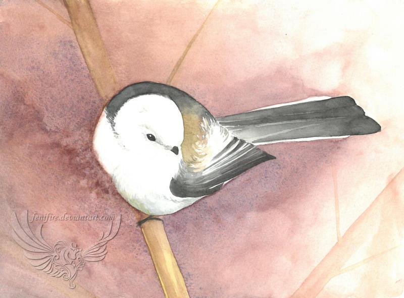 Long-tailed tit | Polish Bird Series by fenifire