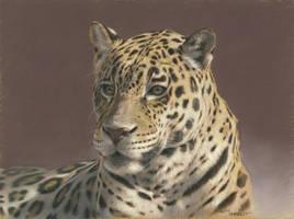 Jaguar : Pastel on pastelmat paper by wimke