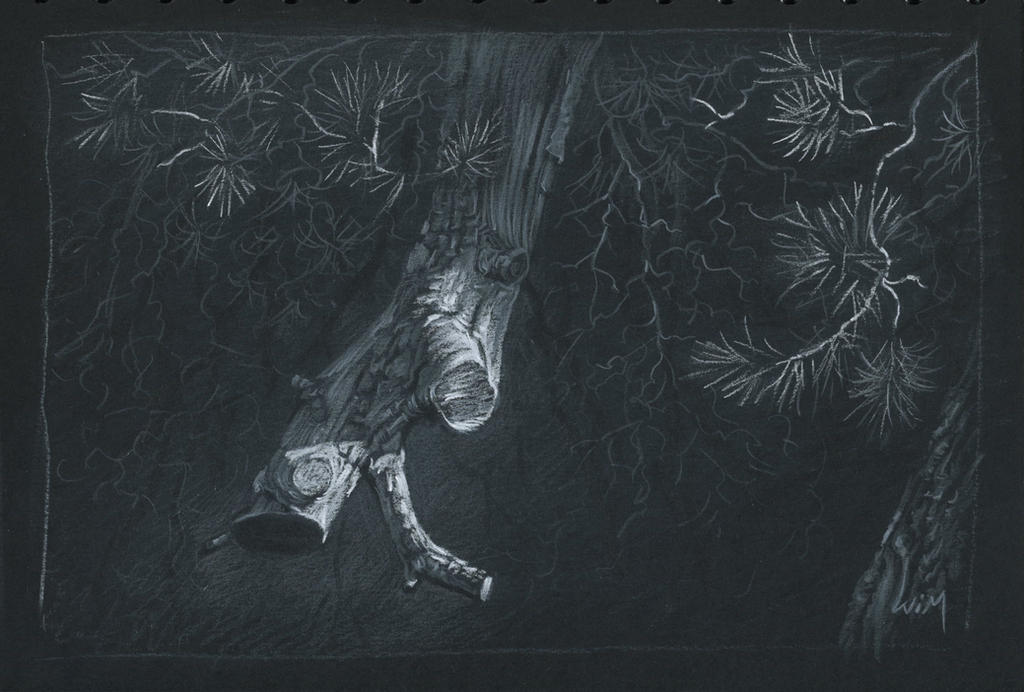 Branch : White and grey pencils on black paper by wimke