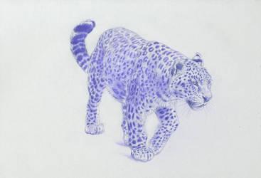 Walking panther