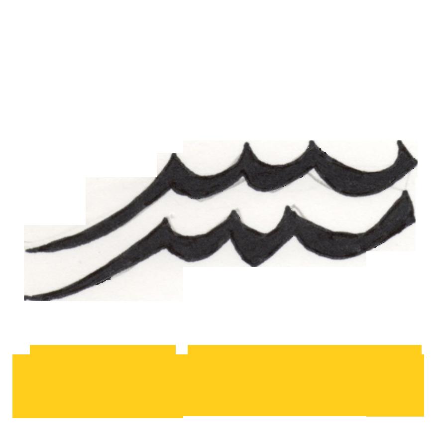 Image result for aquarius horoscope symbol