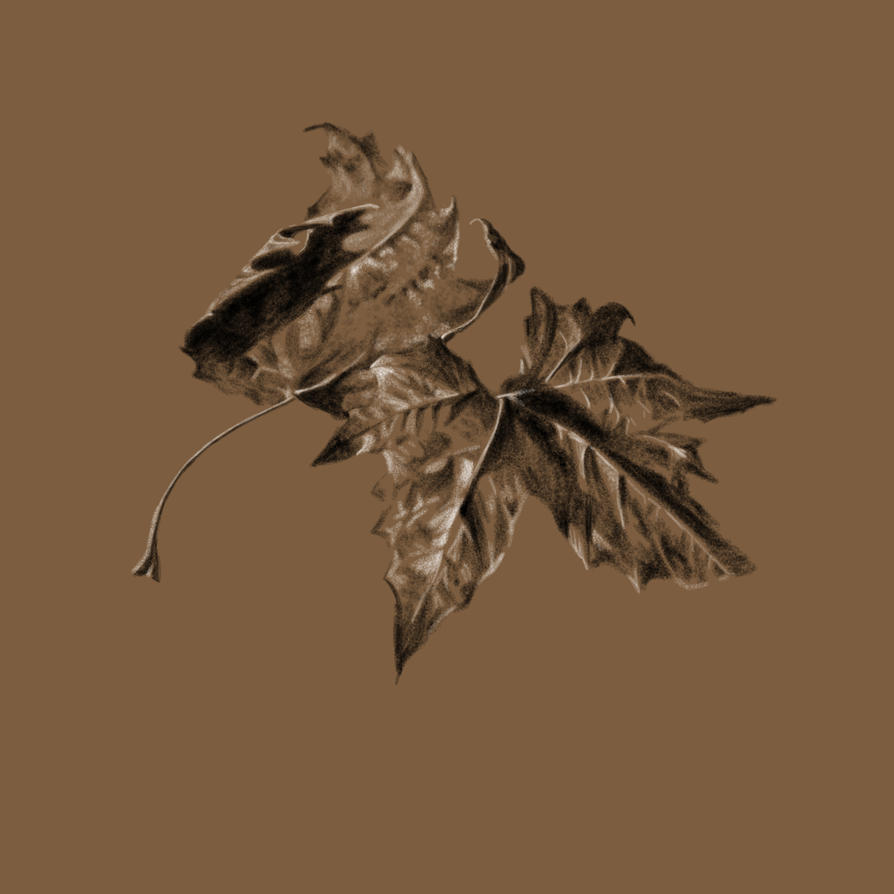 Leaves in Digital Charcoal by miss-Hobbit