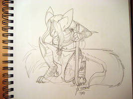 Warrior of the Page by Temrin