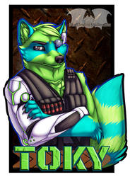 VF2017 - Toky by Temrin