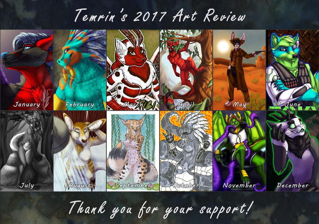 2017 Review / Improvement Meme. by Temrin