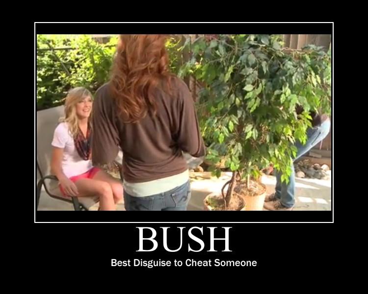 Bush by htfman114