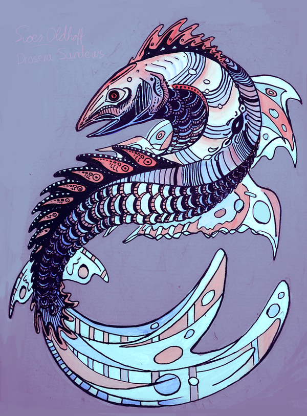 The Salmon of Enthousiasm by drosera-sundews