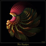 Miss Apophysis - For Morgan