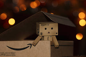 Welcome in Germany, Danbo by Brigitte-Fredensborg