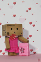 Danbo's new dress by Brigitte-Fredensborg
