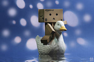 Danbo in 'Swan Lake' by Brigitte-Fredensborg
