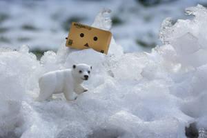 Polar expedition by Brigitte-Fredensborg