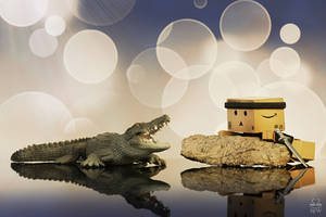 Crocodile Woodee by Brigitte-Fredensborg