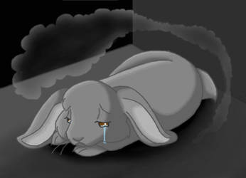 Sad Bunny by KatRaccoon