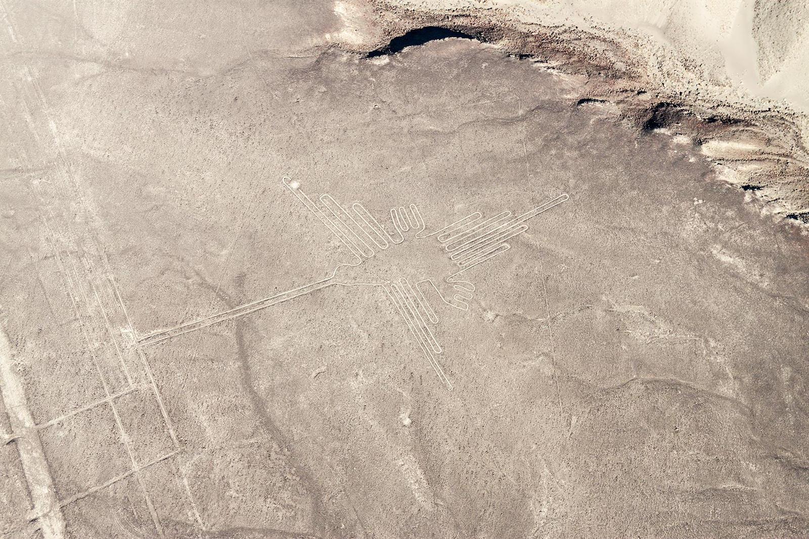 Nazca - The Hummingbird by TarJakArt