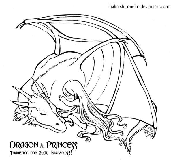 Dragon n Princess