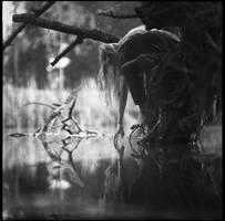 memory of light by LostOneself