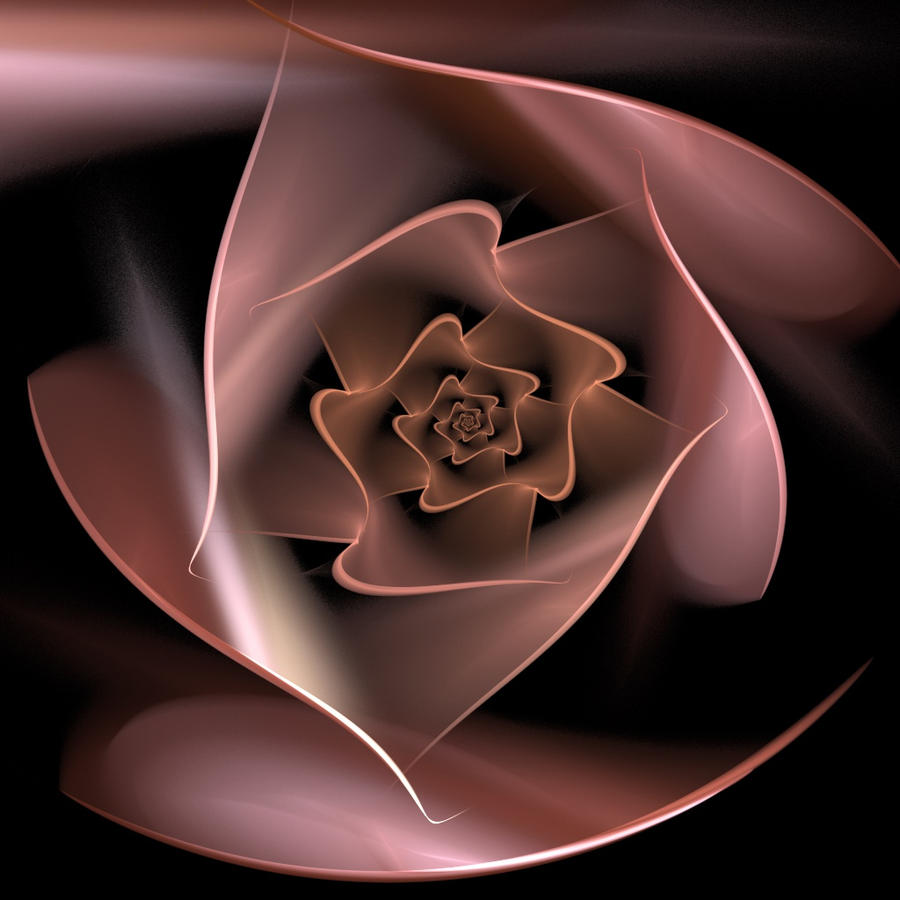 Ship Of Dreams Spiral Rose by auntDevi