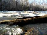 Alcovy River