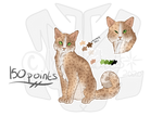 Cat Adopt 1 [PRICE REDUCED- 75 points | OPEN] by lcyStudios