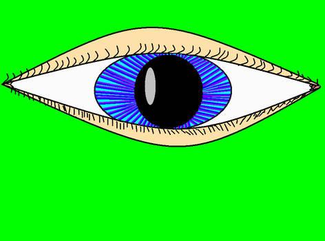 ' an eye 'XD