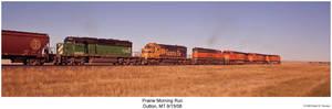 Prairie Morning Run