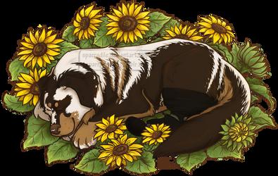 Sleepy Sunflower