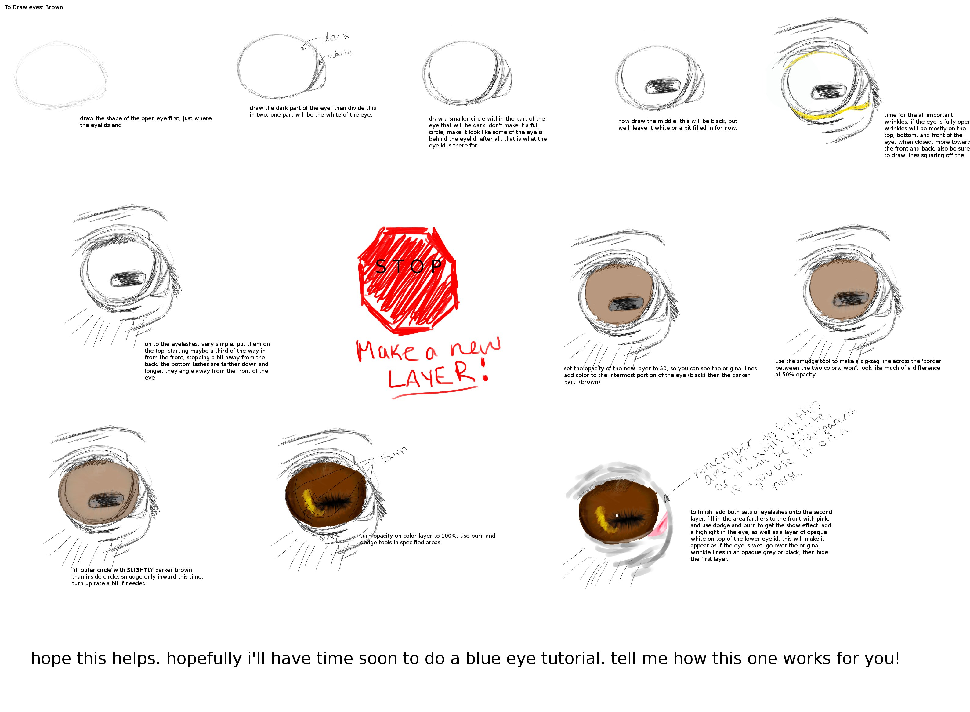 How To Draw A Horse Gimp By Guillaume Apollinaire Brown Horse Eye Tutorial  Gimp By Gordyluv