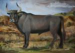 Ancient Wild Bull