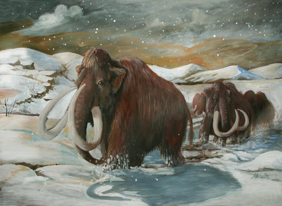 wooly mammoth final by sedeslav on deviantart