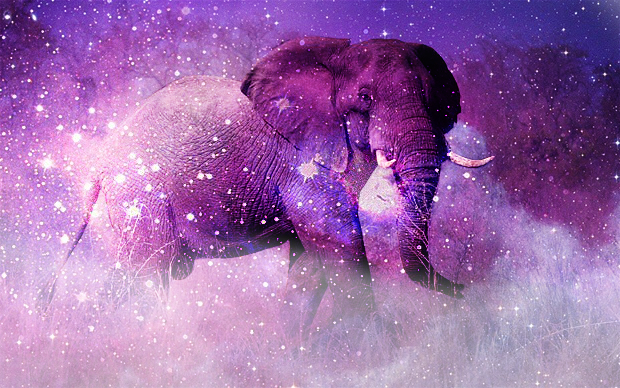 galaxy elephant by aetheriallight - photo #1
