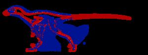Microraptor WIP