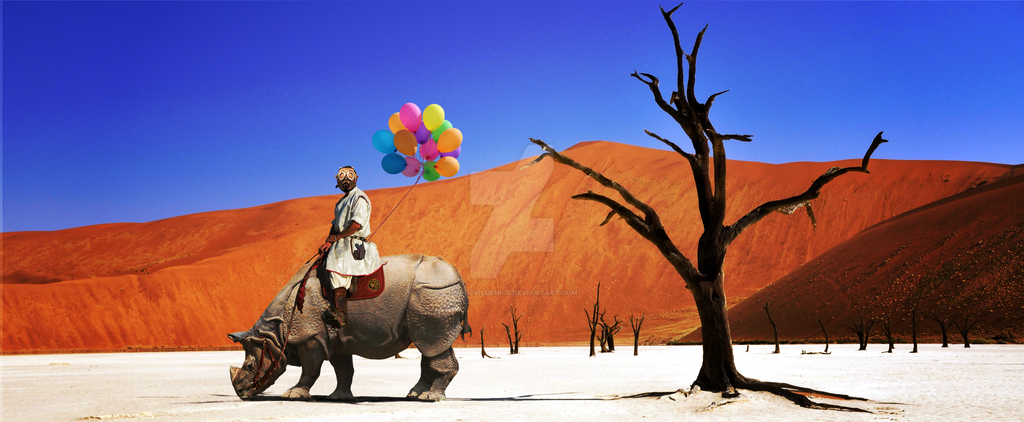 Rhino Rider, Balloon Collector by NotEvilGenius