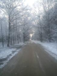 The Snow Returns Again