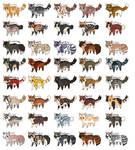 (31/40 OPEN) 40 Kitty Adopts
