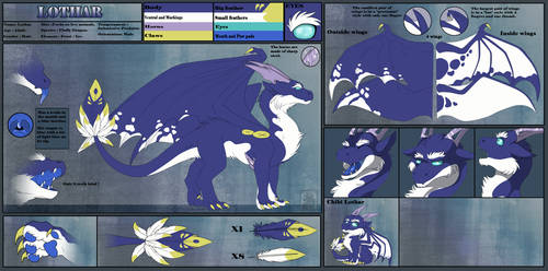 Lothar - Reference Sheet UPDATED