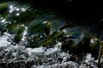 Waters flow