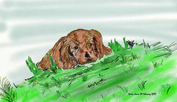 Grassy Mutt by lolslikemuttley