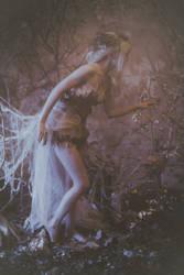 hidden fairytales