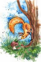 Squirrel by AviFlatcher