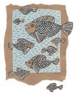 Herring swim by AviFlatcher