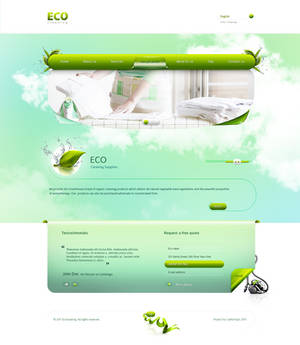 Eco Cleaning Website