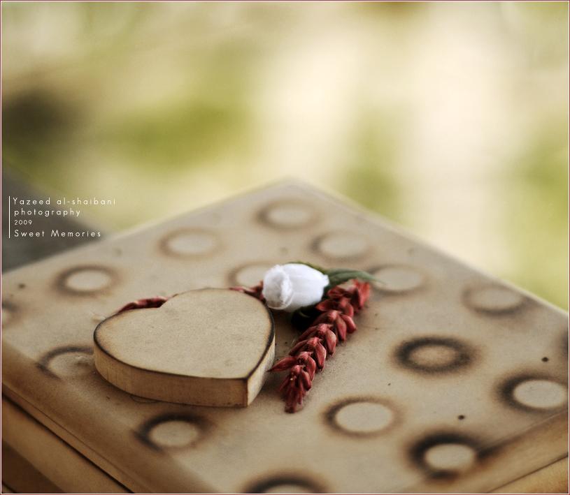 Sweet Memories by SondoS - TatL� A�k