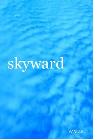 Skyward, my second novel! by VanillaMetal on DeviantArt