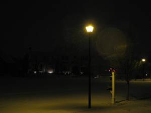 Lamppost in snow II