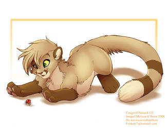 Cougari Finds A Bug