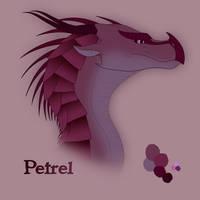 Petrel by xTheDragonRebornx