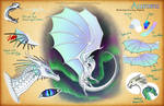 Aurora Reference Sheet