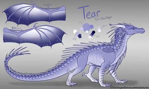 Tear by xTheDragonRebornx