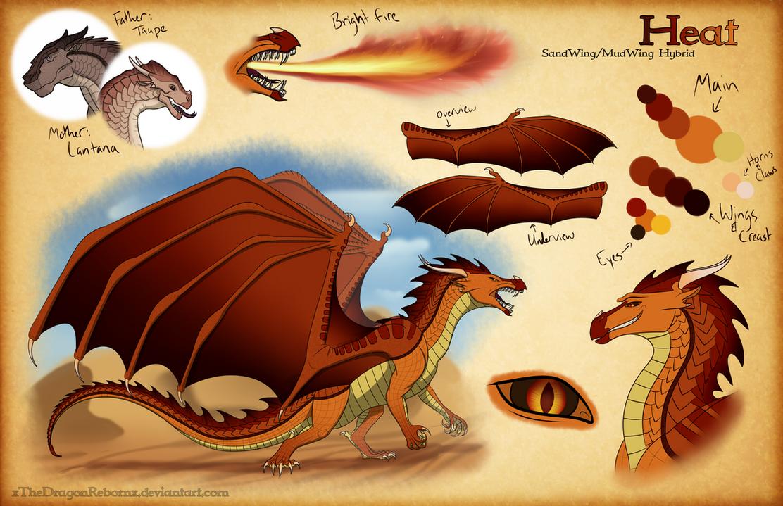 Wings Of Fire Rainwing Head – HD Wallpapers